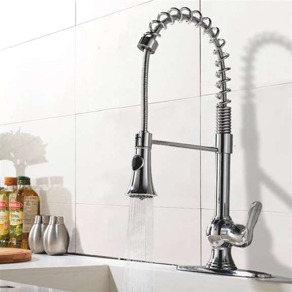 Pampa Chrome Finish Single Handle Kitchen Sink Faucet with Pull Down Sprayer