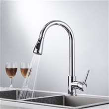 Fontana Cholet Gooseneck Sensorless Chrome Finish Kitchen Faucet with Pull Down Sprayer