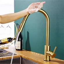 Fontana Dijon Stainless Steel Pull Down Kitchen Faucet with Assistive Touch in Gold Finish