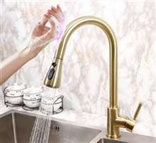 Fontana Deauville Stainless Steel Pull Down Kitchen Faucet with Assistive Touch in Gold Finish