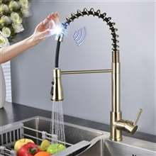 Fontana Sénart Stainless Steel Pull Down Kitchen Faucet with Assistive Touch in Gold Finish