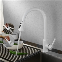 Fontana Valence White Finish Stainless Steel Kitchen Faucet with Pull Down Sprayer