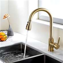 Fontana Verona Gold Finish Stainless Steel Kitchen Faucet with Pull Down Sprayer