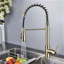 Fontana Dijon Gold Finish Stainless Steel Kitchen Faucet with Pull Down Sprayer