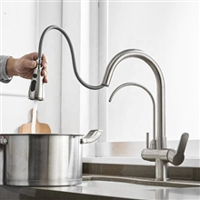Fontana Bavaria Pull Down with Filter Control Kitchen Faucet in Brushed Nickel Finish