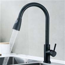 Fontana Verona Matte Black Finish with Pull Down Sprayer Kitchen Faucet