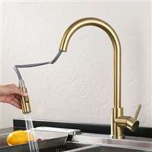 Fontana Carpi Gold Finish with Pull Down Sprayer Kitchen Sink Faucet