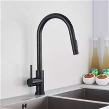 Fontana Bollnäs Matte Black Finish with Pull Down Sprayer Kitchen Sink Faucet