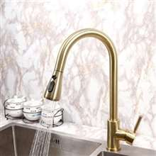 Fontana Valence Gold Finish Kitchen Sink Stainless Steel Faucet