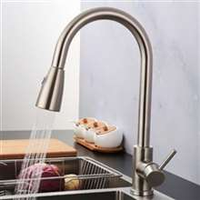 Fontana Verona Brushed Nickel Faucet with Push Button for Two Way Flow Kitchen Sink Faucet