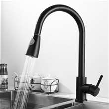 Fontana Bollnäs Matte Black Faucet with Push Button for Two Way Flow Kitchen Sink Faucet