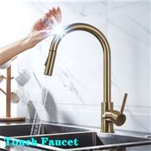 Fontana Dax 360 Rotation Pull Out Sprayer Sensor Touch Kitchen Faucet in Gold Finish