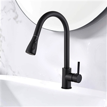 Fontana Toulouse 360 Rotation Pull Out Sprayer with Button For Two Way Flow in Matte Black Kitchen Sink Faucet