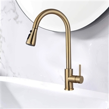 Fontana Cholet 360 Rotation Pull Out Sprayer with Button For Two Way Flow in Gold Kitchen Sink Faucet