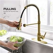 Fontana Dijon Gold Kitchen Faucet with Pull Down Sprayer Single Handle Kitchen Sink Faucet with Deck Plate