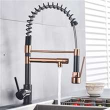 Kitchen Sink Faucet with Pull Out Sprayer