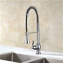 Campania Chrome Single Handle Kitchen Sink Faucet with Pull Down Sprayer