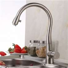 Portici Stainless Steel Brushed Nickel Single Handle Kitchen Faucet