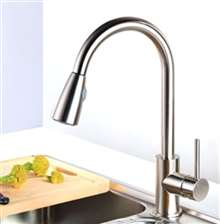 Venice Brushed Nickel Single Handle Kitchen Sink Faucet with Pull Down Spout