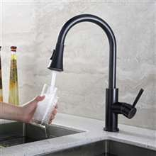 Leon Oil Rubbed Bronze Kitchen Sink Faucet with Pull Down Spout