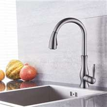 Lyon Brushed Nickel Pullout Kitchen Sink Faucet
