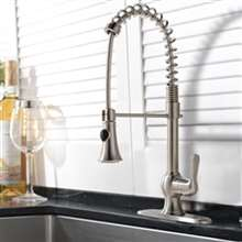 Niquero Single Handle Kitchen Sink Faucet with Pull Spray