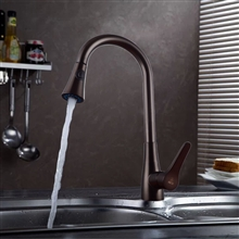 Sintra Kitchen Sink Faucet with Pullout Sprayer