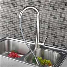 Agueda Kitchen Sink Faucet with Pullout Sprayer