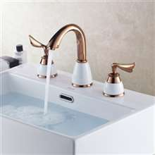 Leonardo Gold Dual Handle Sink Faucet