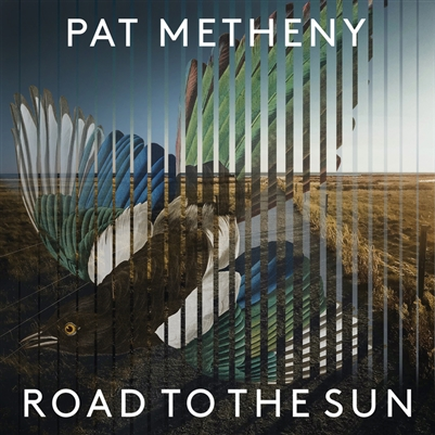 Pat Metheny - Road To The Sun - VINYL LP