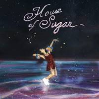 (Sandy) Alex G - House Of Sugar - VINYL LP