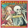 GRATEFUL DEAD-Skeletons In The Closet: The Best The Grateful Dead (White Edition Vinyl) LP