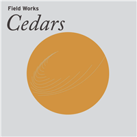 Field Works - Cedars - VINYL LP