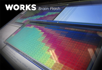 WORKS Brain Flash P1 with EcuTek