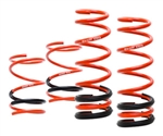 Swift Sport Springs Scion FR-S