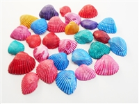 small dyed ark shells
