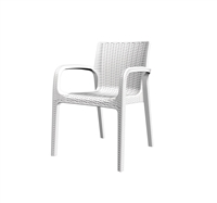 KOPPLA Modern Designed Chair ( Set of 4 )