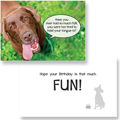 Birthday-So Much Fun