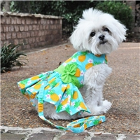 Pineapple Luau Dog Harness Dress with Matching Leash