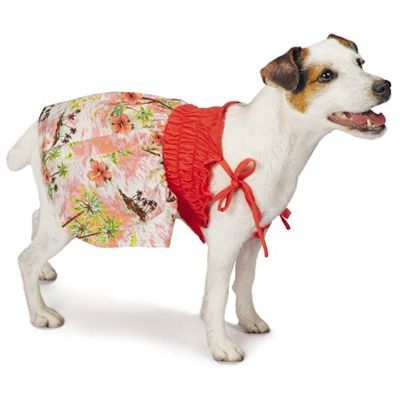 Hawaiian Breeze Dog Dress