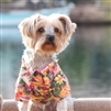 Hawaiian Camp Dog Shirt-Sunset Hibiscus
