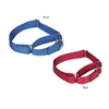 Nylon Martingale Dog Collars