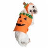 Pet Krewe Pumpkin Dog Costume