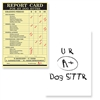 Pet Sitter - Dog Sitter Report Card