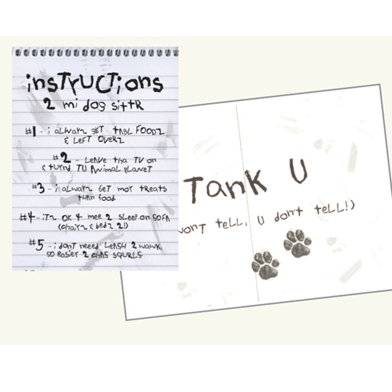 pet sitting instructions 2 mi dog sittr