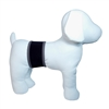 PlayaPup Dog Belly Band-Black