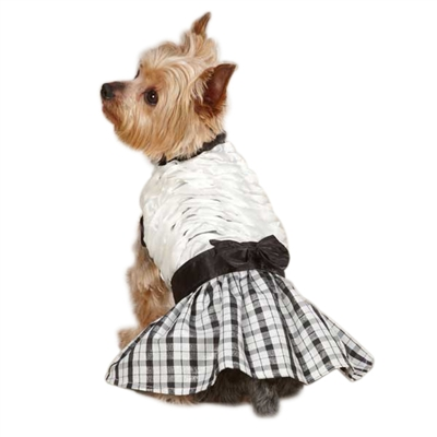 Ruffle Taffeta Dog Dress