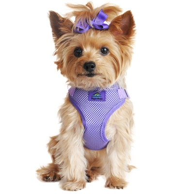 Wrap and Snap Choke Free Dog Harness - Paisley Purple
