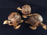 Coco Turtles with Design