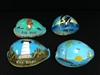Painted Assorted Cowry Key West